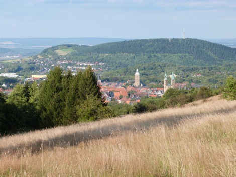 View of Goslar from Steinberg Alm